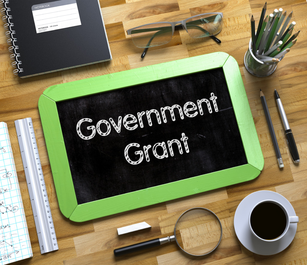 補助金 government Grant